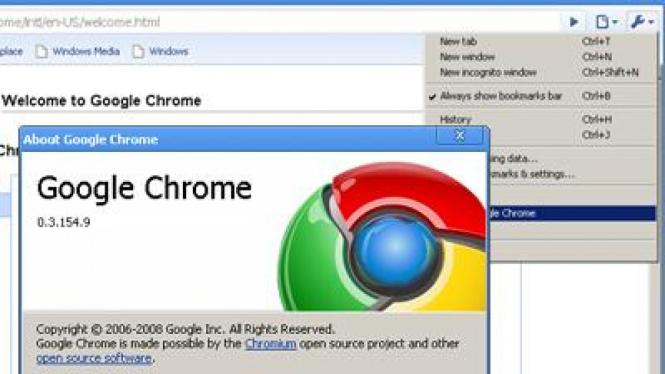 Google Chrome versi 0.3