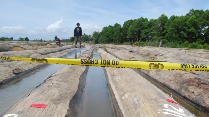 Kayu sitaan hasil illegal logging di Kutai Kartanegara