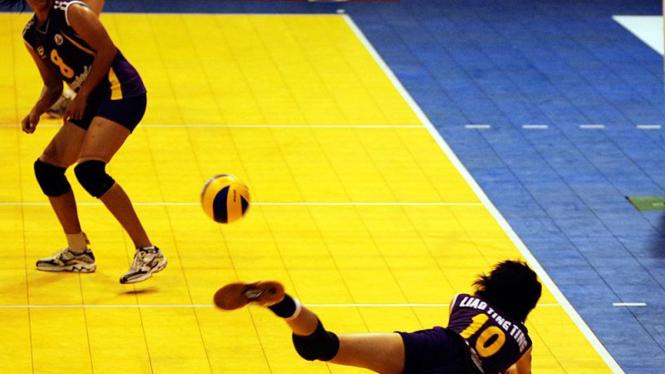 Voli Pro Liga 2009
