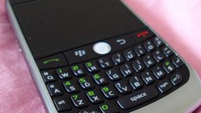 BlackBerry Curve 8900 Javelin