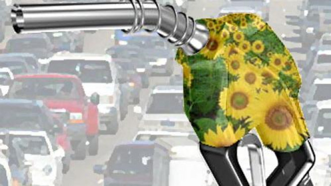 Ilustrasi Biodiesel