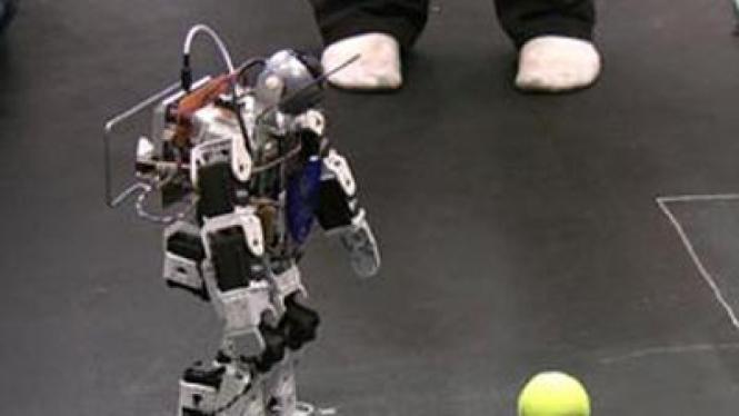 Robot Pemain Bola