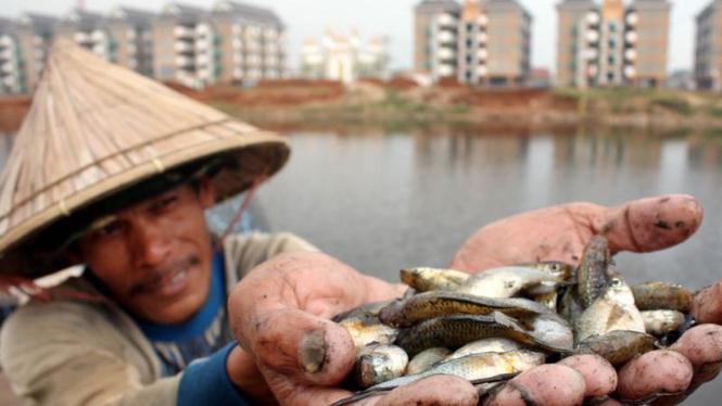 Nelayan