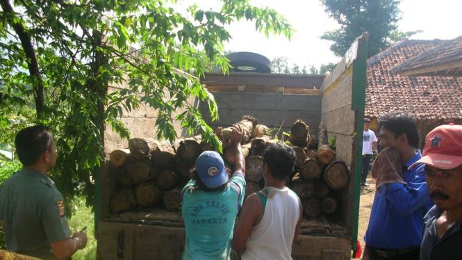 Barang bukti illegal logging diamankan