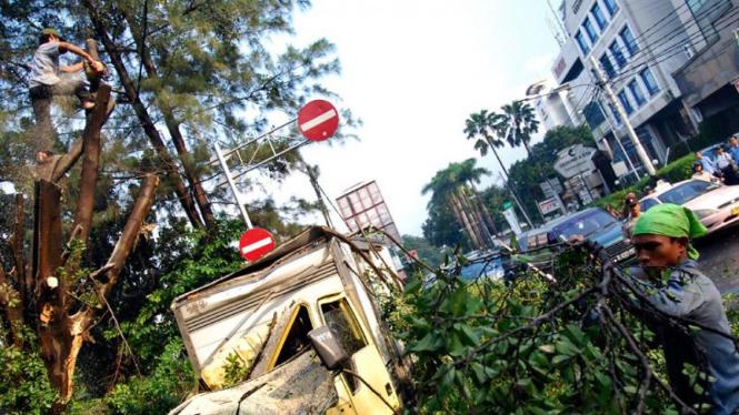 Pohon Tumbang Gondangdia Timpa Mobil Box