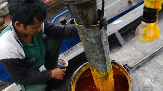 Pekerja sedang memasukkan minyak sawit (CPO) ke kapal tongkang.