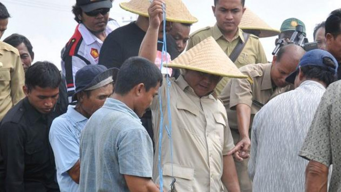 Prabowo Subianto menangkap hama tikus bersama petani