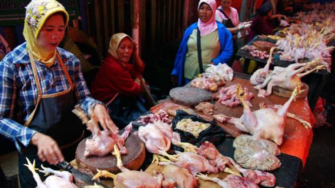 Daging Ayam Potong