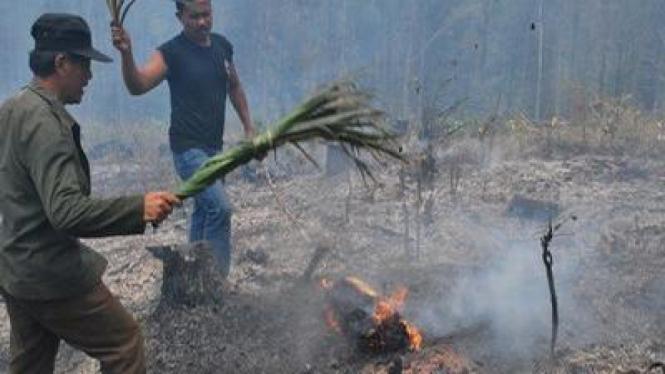 Kebakaran Hutan di Madiun