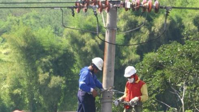 Petugas PLN di Surabaya membenahi jaringan listrik