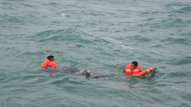 Tim SAR evakuasi korban kapal feri Dumai Express 10 yang tenggelam