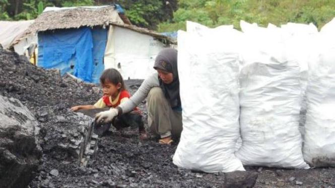 Mengemas batubara ke dalam karung