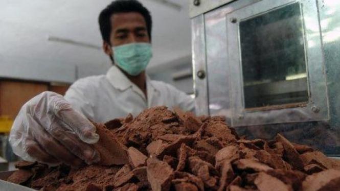 Mengolah kakao menjadi cokelat