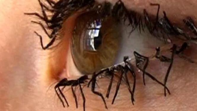 Bulu mata kaki lalat