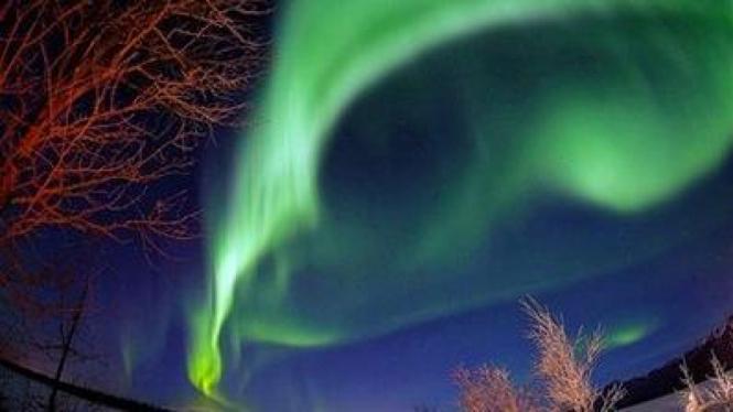 Cahaya aurora