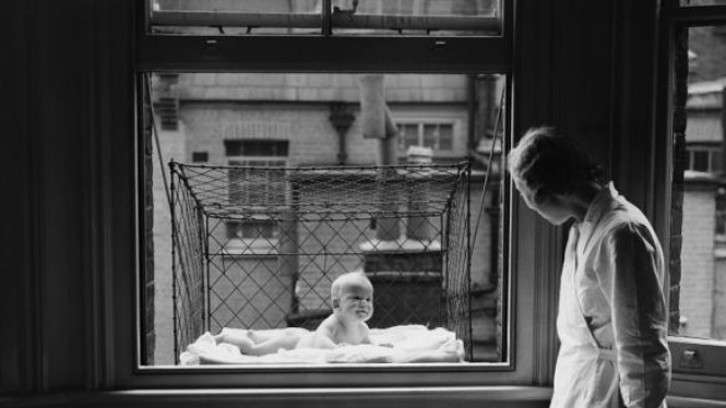 Kandang bayi di jendela