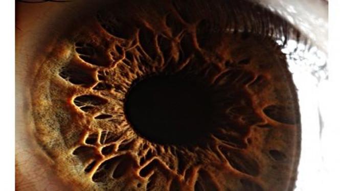 Mata manusia seperti kawah planet Mars