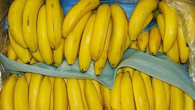 Pisang Cavendish atau pisang Ambon Putih