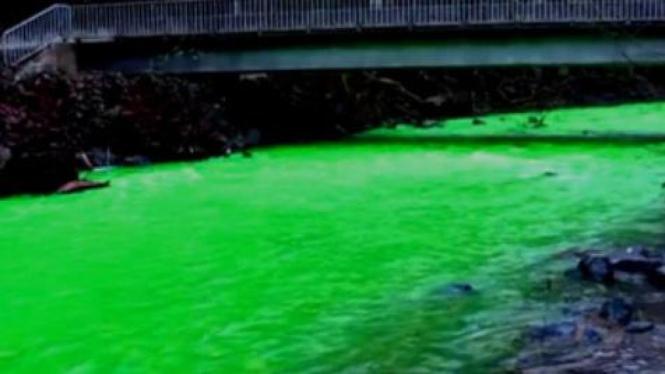 Aliran Goldstream River yang berwarna hijau terang