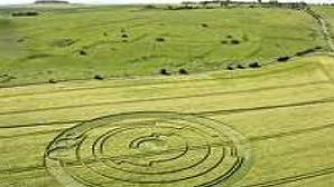 Ilustrasi crop circle