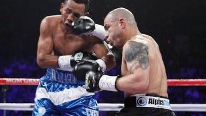 Miguel Cotto melawan Ricardo Mayorga