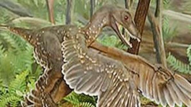 Dinosaurus berbulu yang hidup di kawasan dingin di kawasan timur laut China.