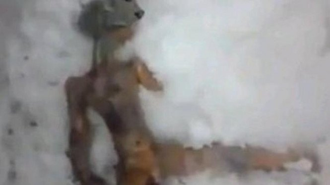 'Mayat alien' di Siberia