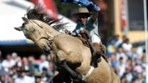 https://thumb.viva.co.id/media/frontend/thumbs3/2011/04/21/109505_kompetisi-rodeo-di-uruguay_213_120.jpg