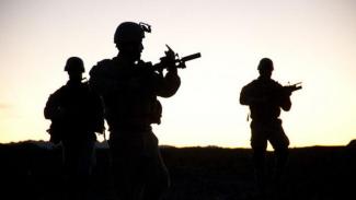 Ilustrasi pasukan khusus sedang mengintai.