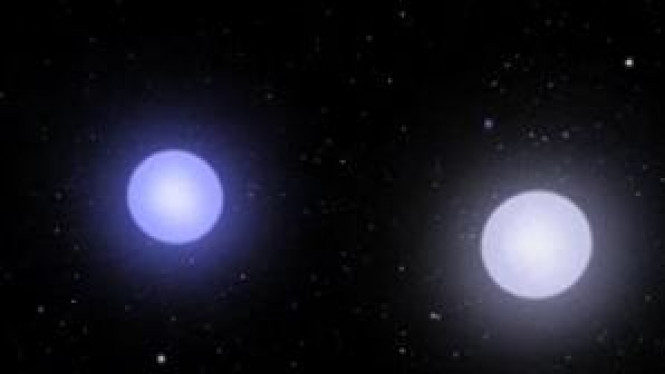 Dua buah bintang 'dwarf star' yang akan saling bertabrakan.