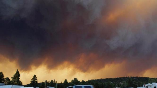 Kebakaran hutan di Arizona