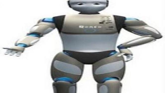 Robot Romeo