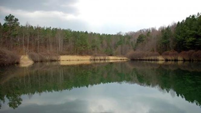 Danau Pristine, Amerika Serikat.