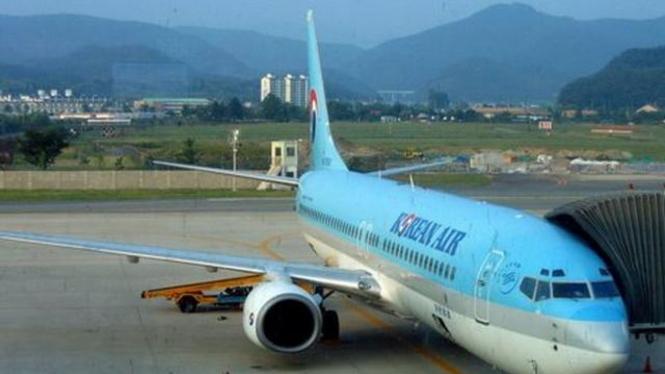 Pesawat milik maskapai Korean Air