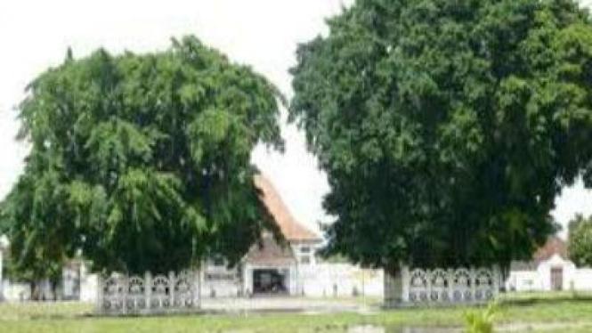 Alun-alun Kidul, Yogyakarta