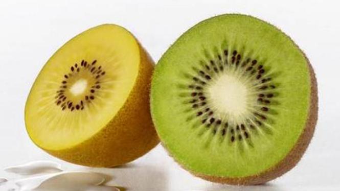 Kiwi hijau dan kiwi gold