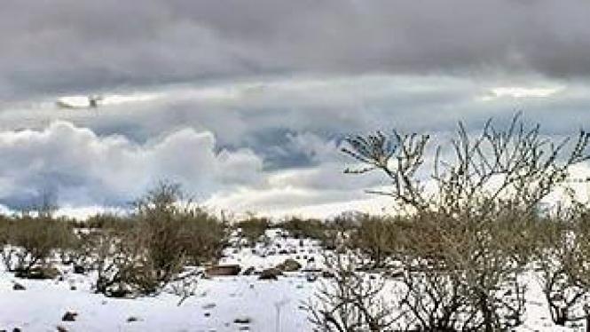 Gurun pasir Atacama, Chile