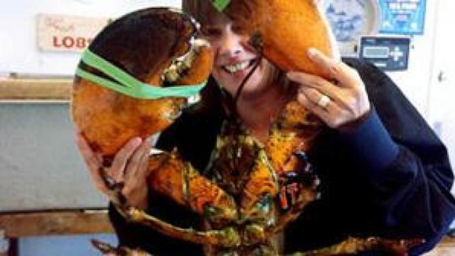 Lobster raksasa