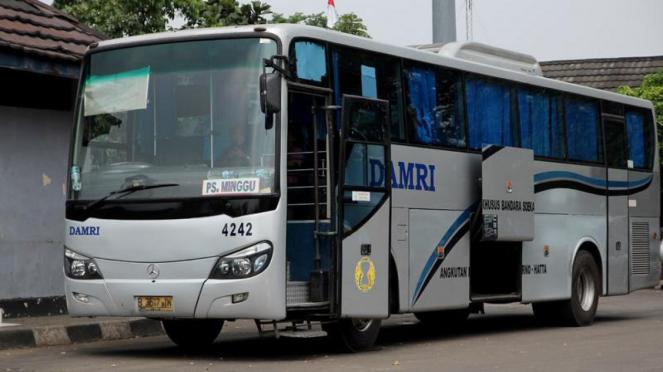 ilustrasi bus Damri.