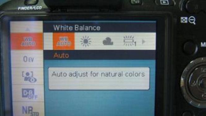 White balance pada kamera