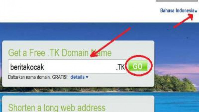 Domain gratis dot tk