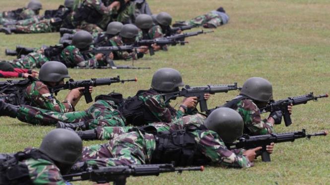 Aksi Pasukan Marinir