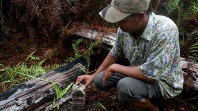 Warga melihatkan patok perbatasan Indonesia-Malaysia di Camar Bulan