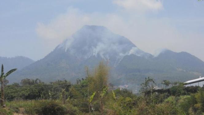 Hutan di Gunung Panderman terbakar