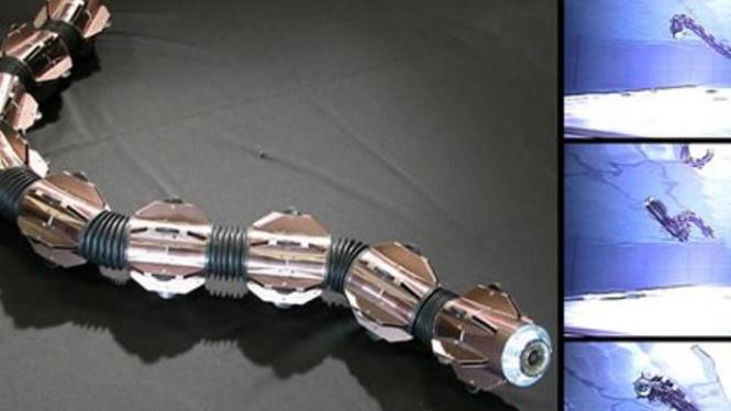 ACM R-5, Robot Ular Amfibi