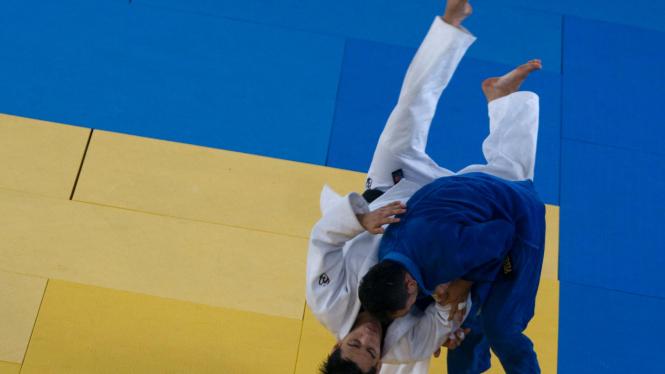 Ilustrasi Judo