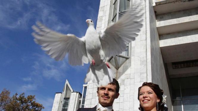 Histeria 11-11-11 di Berbagai Belahan Dunia