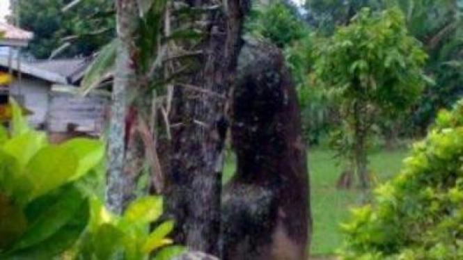 Situs Prasejarah Batu Bedil, di Lampung
