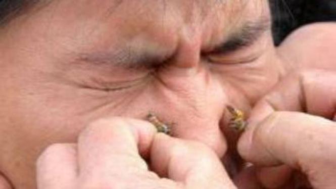Facial Lebah