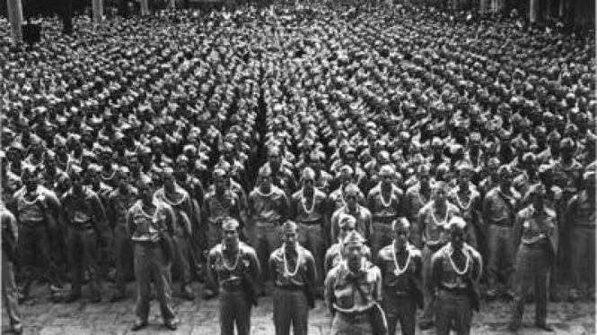 Unit Militer Nisei